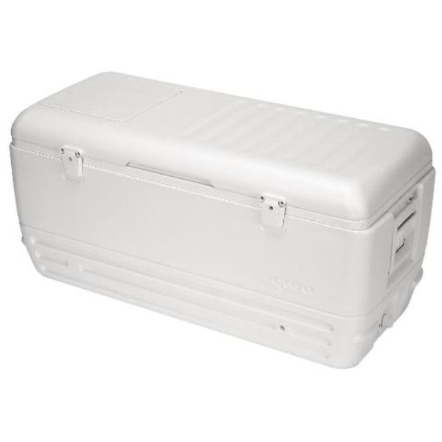 Where to find COOLER CHEST IGLOO 150 QT in Edmonton